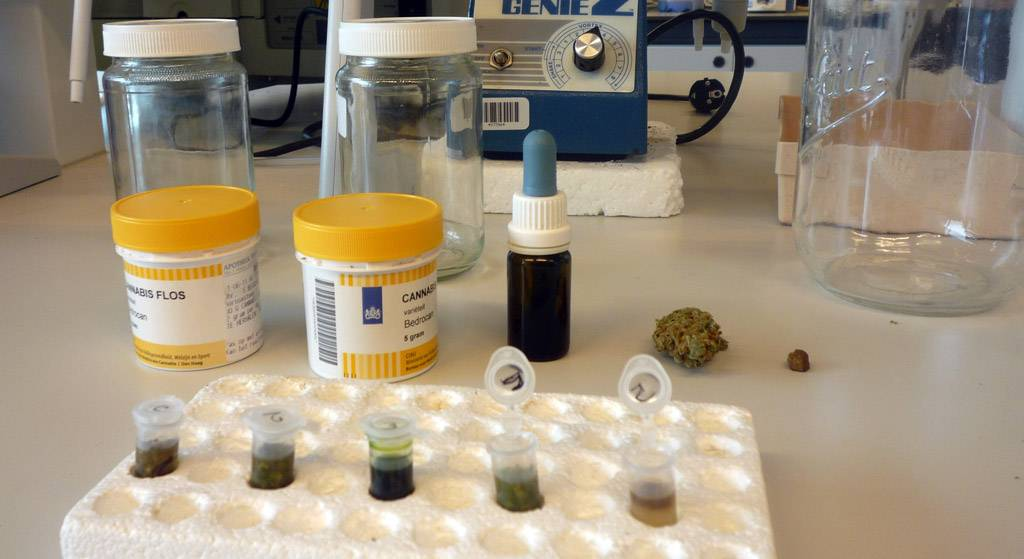 "Different types of samples, from cannabinoid herbal based to other cannabinoid derivates (left to right: Bedica®, Bedrocan®, tincture, flower, resin ""haschich"")"