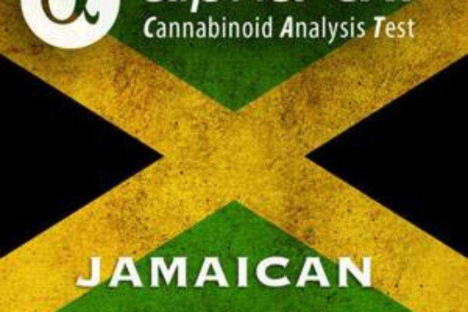 Alpha-cat Jamaican Expedition 2016