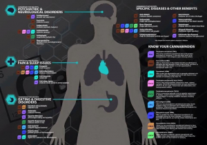 Cannabinoids and conditions