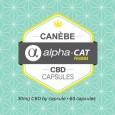 Logo Capsules CBD Canebe