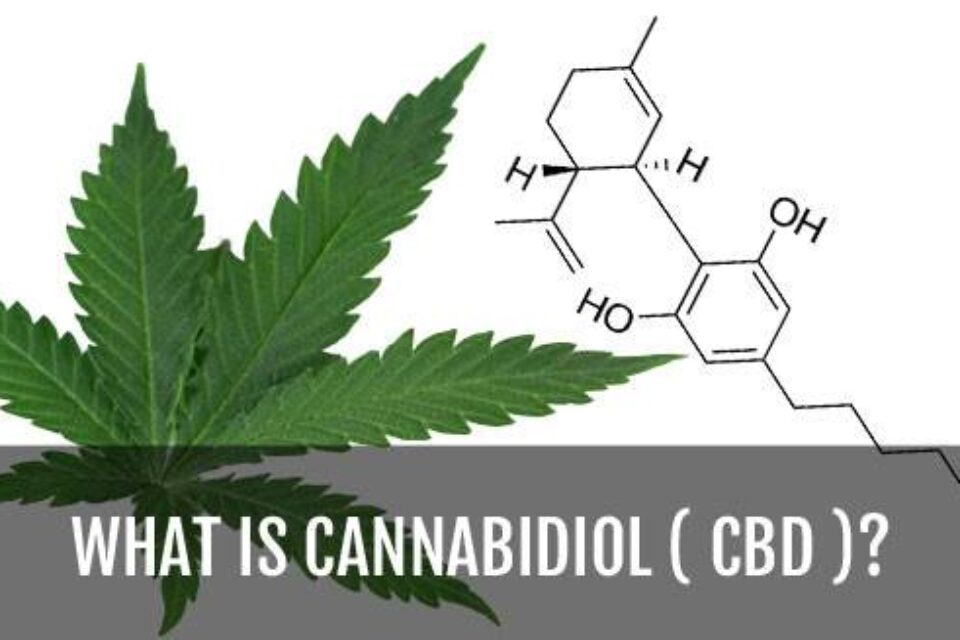 Medical properties of the CBD