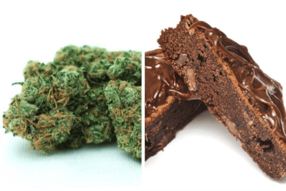 Top 15 Ways to Consume Marijuana, Which One Have You Tried?