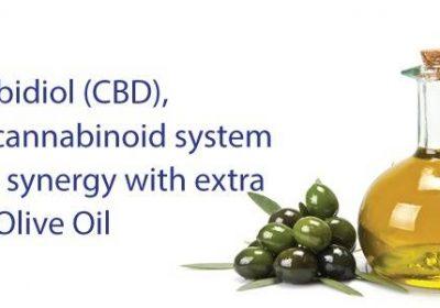 Cannabidiol (CBD), ECS y su sinergia con aceite de oliva extra virgen