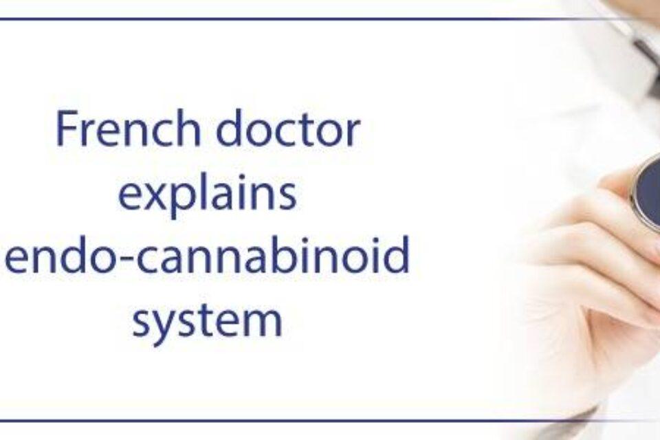 Doctor francés nos explica el sistema endo-cannabinoide