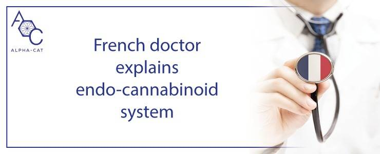French doctor explains us endo-cannabinoid system